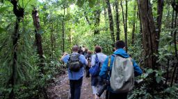 Costa Rica: A Musical Expedition